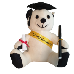 Graduation Message Bear 20cm 'Chubby'